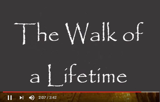 Walk-Lifetime